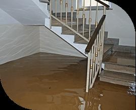 Water & Fire Damage